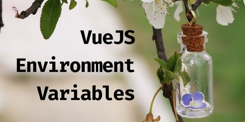 Environment Variables in VueJS